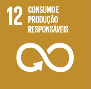 12. Consumo e Produção Responsáveis - RAPS