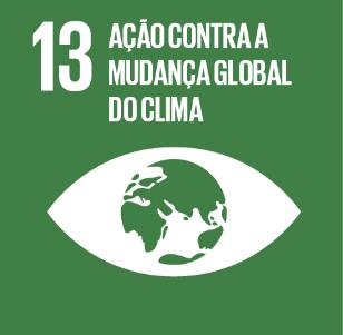 13. Ação Contra a Mudança Global do Clima - RAPS