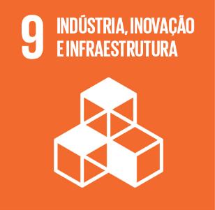 9. Indústria, Inovação e Infraestrutura - RAPS