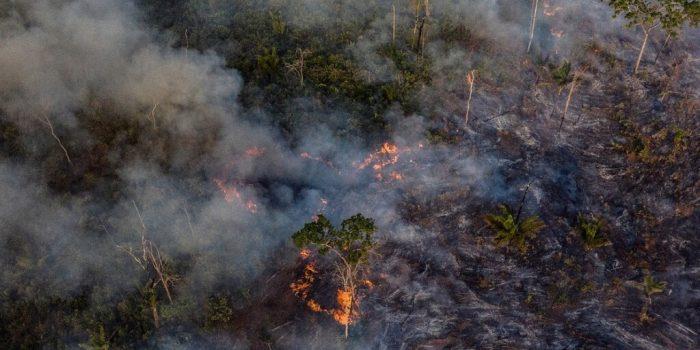 RAPS promoverá painel sobre crise climática no Brasil durante a COP25