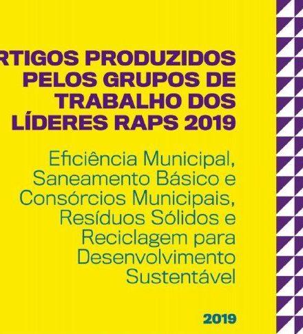 Artigos | Grupos de Trabalho dos Líderes RAPS 2019