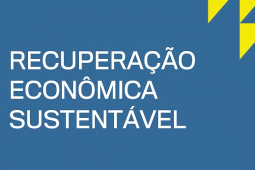 RAPS e FFHC promovem debate sobre caminhos e desafios para retomada econômica sustentável