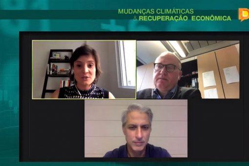 RAPS participa de debate sobre retomada verde entre parlamentares do Brasil e Alemanha