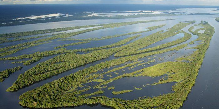 RAPS participa de plenária da Concertação pela Amazônia